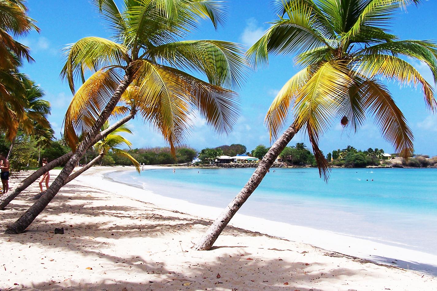 Sailndream : location de voiliers en Martinique, location de bateaux en Martinique